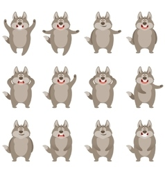 Set of flat wolf icons vector image vector image