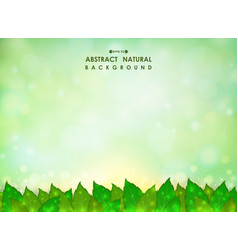 abstract of green natural leaves background with vector image