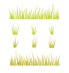 collection grass templates - green and yellow vector image