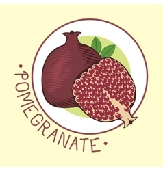 Decorative ornamental pomegranate fruit vector image