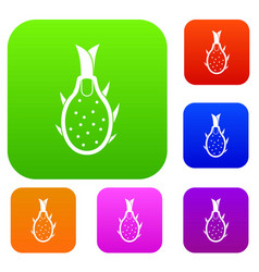 Dragon fruit set collection vector