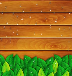 green leaves on a wooden background vector image