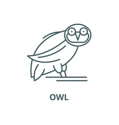owl line icon linear concept outline sign vector image