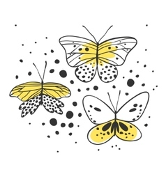 Set of butterfly Hand drawn vector image
