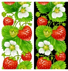 strawberry seamless vertical pattern vector image vector image