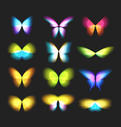 butterfly isolated logos set bright colorful vector image