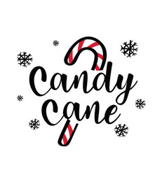 christmas theme candy with candy cane vector image