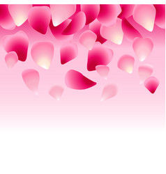 floral pink background decorated with rose petals vector image
