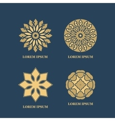 Gold mandalas or geometrical figures decorative vector
