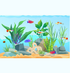 hand drawn aquarium with fish and seaweed icons vector image