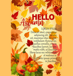 Hello autumn banner with orange leaf and pumpkin vector