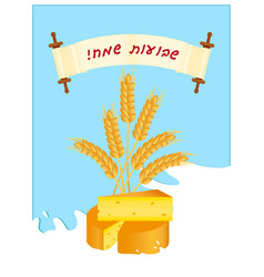 Jewish holiday of shavuot wheat ears and cheese vector