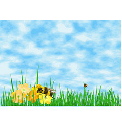 meadow and sky vector image