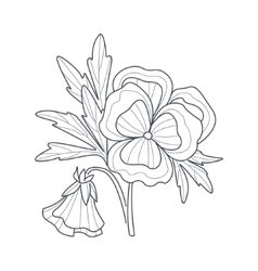 Pansy Flower Monochrome Drawing For Coloring Book vector