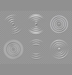 ripples top view realistic water concentric vector image