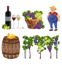 Vineyard set collection farmer bottle glass vector