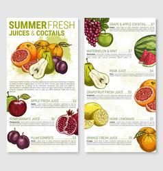 menu sketch for tropical exotic fruit vector image