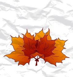 Autumnal maple leaves crumpled paper texture vector image