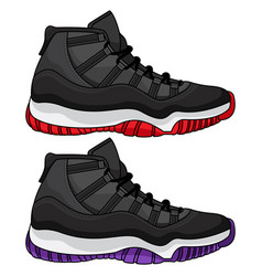 Best basketball shoes vector