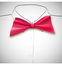Bow tie on a background sketch the shirt vector image