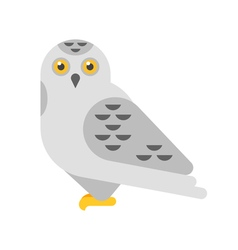 flat style of snowy white owl vector image vector image