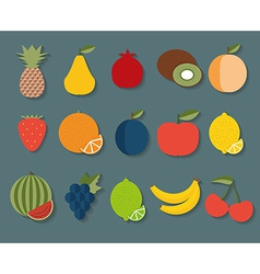 Fruit icon The image of fruits and berries symbol vector image