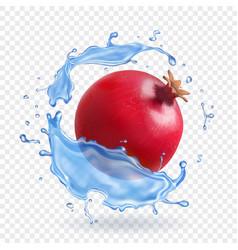 Pomegranate in water splash fresh fruit realistic vector