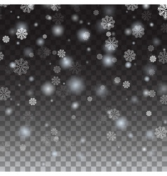 Isolated Falling snow on a transparent background vector image vector image