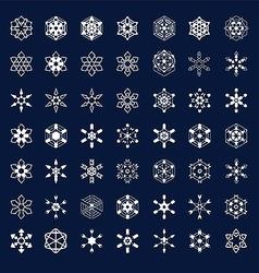 Frozen snowflakes vector image