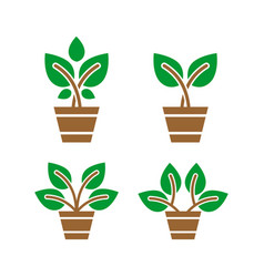 green plant logo design vector image