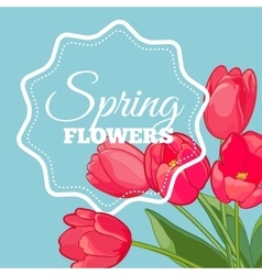 Greeting card with Blooming Tulip Flowers vector