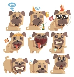 Little pet pug dog puppy with collar collection of vector