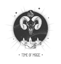 Magic witchcraft taros card with animal skull vector
