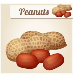 Peanuts Detailed Icon vector