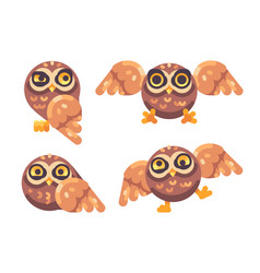set of funny brown owls flat vector image