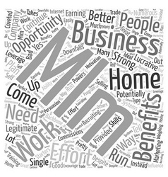 Work From Home MLM Business Opportunity Word Cloud vector image