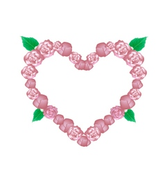 Pink Glory Bower Flowers in Heart Shape vector image