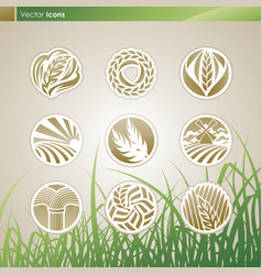 Wheat and rye logo vector image vector image