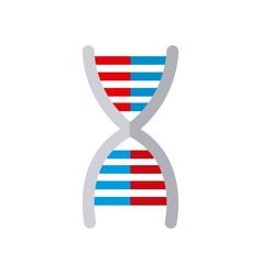 dna medical molecule biology image vector image
