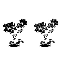 Castor Plant Contours and Silhouette vector