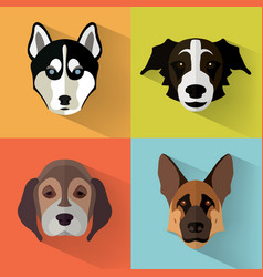 dog portraits with flat design vector image