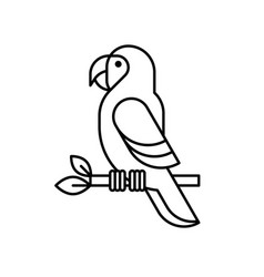 Macaw parrot line icon vector