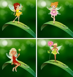 Fairies standing on green leaves vector image vector image