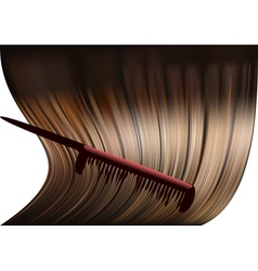 hair and comb vector image vector image