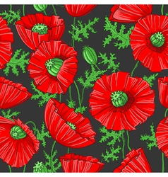pattern with poppies vector image vector image