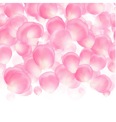 background with falling pink petals vector image