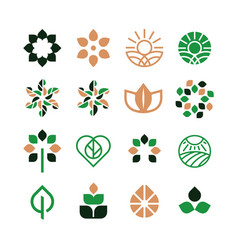 Modern professional seed icons set in eco style vector