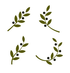 set green olive branch logo olive oil vector image