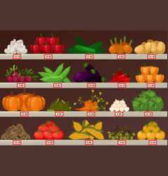 Vegetables at market showcase or shop stall vector
