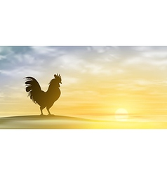 Cockerel vector image
